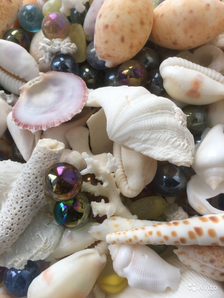 Аквариум- Ракушки для дизайна аквариума, 1,5 кг купить на Зозу.ру - фотография № 2