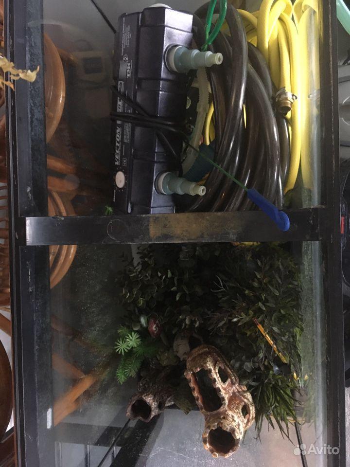 Аквариум и куча всего аквариумного купить на Зозу.ру - фотография № 5