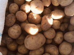 Картошка для скота