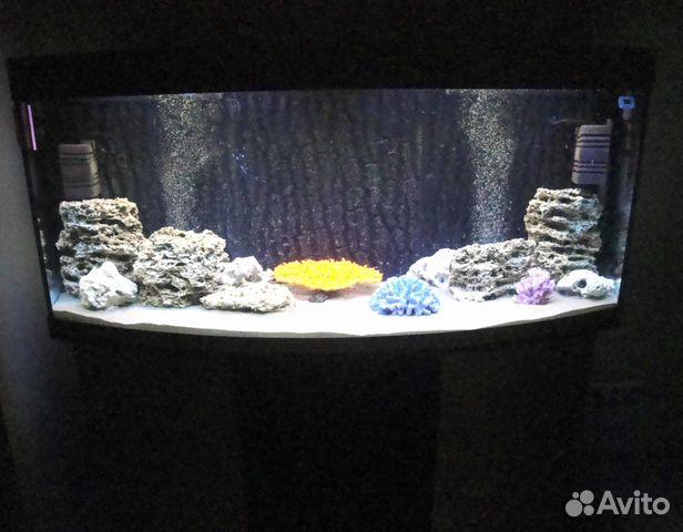 оборудование для аквариума купить белгород двух словах