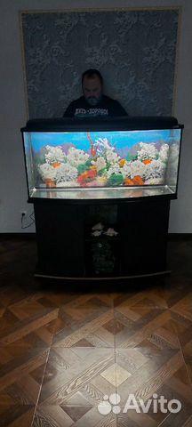 Коралл для аквариума купить 6